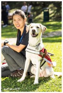 導盲犬訓練員